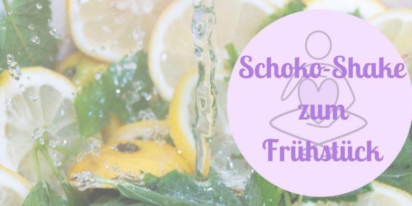 Familienküche Schoko-Shake zuckerfrei